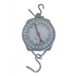 dial style scale