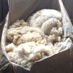 All  Wool Supply Products