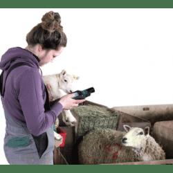 livestock management equipment
