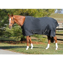 Cavalier Century Softshell Dress Sheet