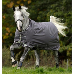 Horseware Ireland Amigo Bravo 12 Original Turnout Medium Excal Plum