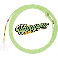 Cactus Ropes Swagger