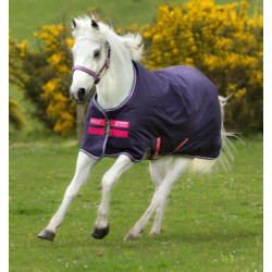 horeware_ireland_amigo_hero_900_pony_blanket