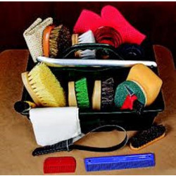 horse_grooming_supplies_tools