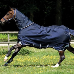 horse_wear_turnout_rugs_and_blankets