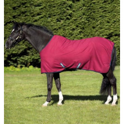 horseare_ireland_acaw62_qk00_cooler