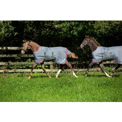 horseware_ireland_amigo_foal_turnout_blanket_excalibur_and_purple