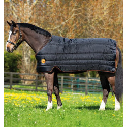 horseware_ireland_ionic_linear_100g_black_orange