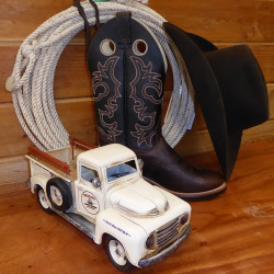 Western Toys Gifts and Collectibles