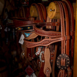 western_head_stalls_and_bridles