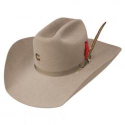 charlie_horse_cfqklp_3742_stone_hat