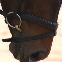 English Horse Bits