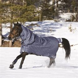 Winter Horse Blankets