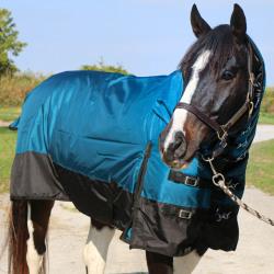 Tech Equestrian 330G Waterproof Winter Blanket Teal