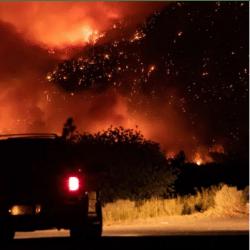 Wildfire Livestock Feed Donations