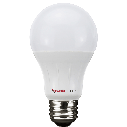 Screw In Bulbs